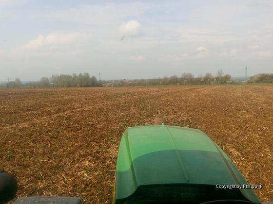 Maisland vorbereiten