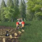 Feldbearbeitung