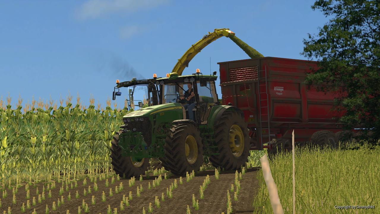 2x Hirsche beim Mais Häckslen