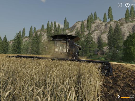 Weizen Dreschen
