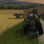 Weizenernte im MP