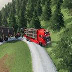 Holztransport im Thüringerwald