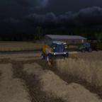 Weizen ernten