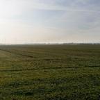 Mal nach den Feldern schauen