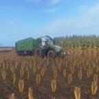 Bisschen Mais fahren mit dem Fendt Vario 930