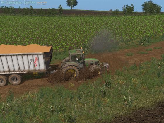 das Getreide ist schwer