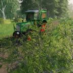 Eine kleine Aussfahrt mit meinem Fendt Farmer 2 gemacht