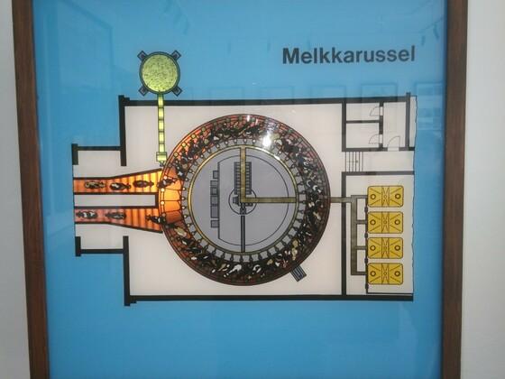 AGRONEUM in Alt Schwerin am 13.07.2017