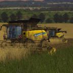 Weizenernte