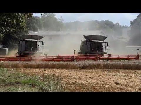 Claas-Fendt-Hawe-MAN / Getreideernte 2017
