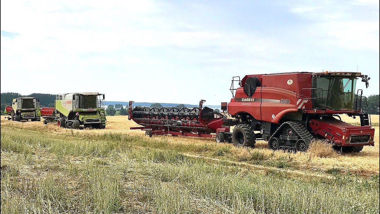 Getreideernte 2018 • Rapsernte 2018 • Gut Hohen Luckow • Case Axial Flow • Claas Lexion • John Deere