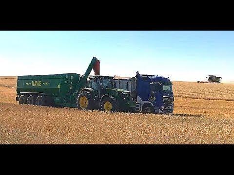 Getreideernte 2018 • Weizenernte 2018 • Gut Hohen Luckow • Mercdes Benz • John Deere • Claas • Case