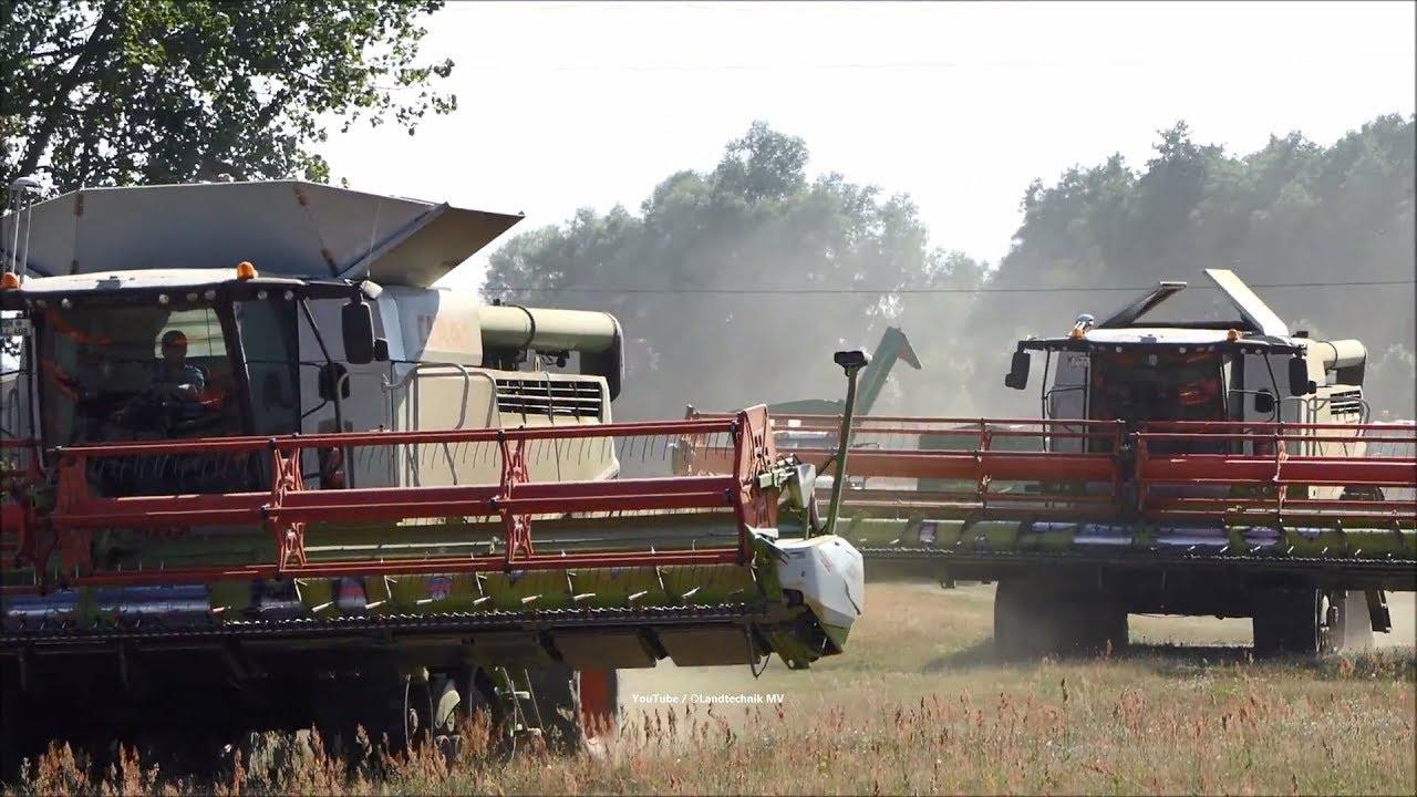 Claas-Fendt / Getreideernte - Grain Harvest 2018