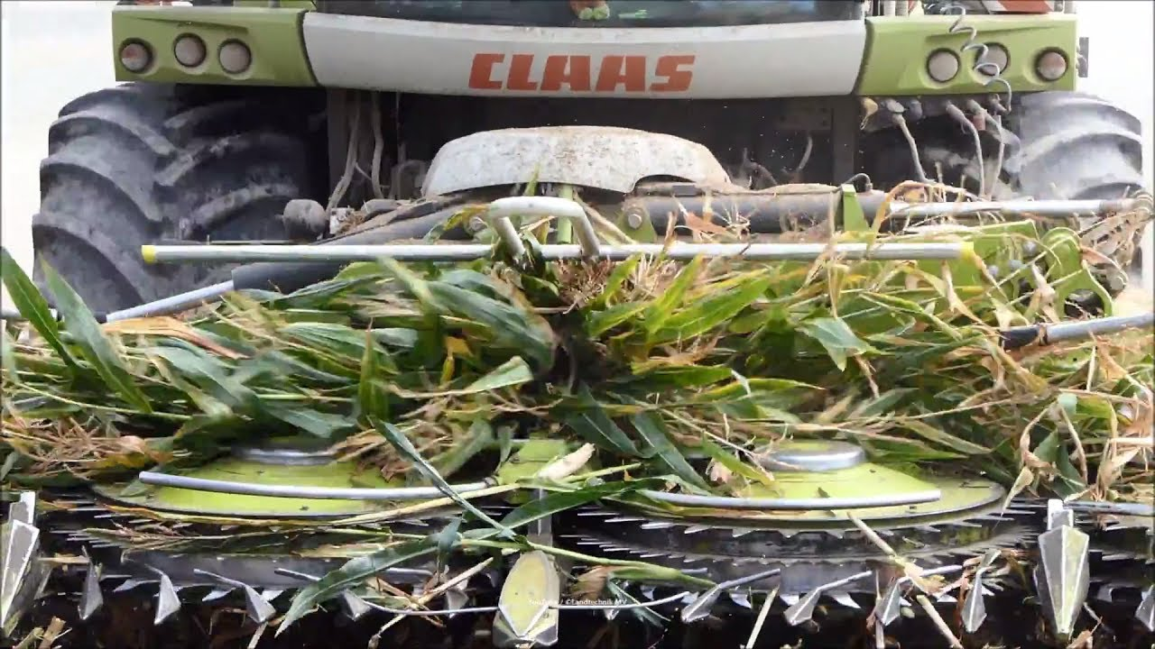 Claas-Fendt-MF /  Maissilage - Corn Silage 2018   2/3