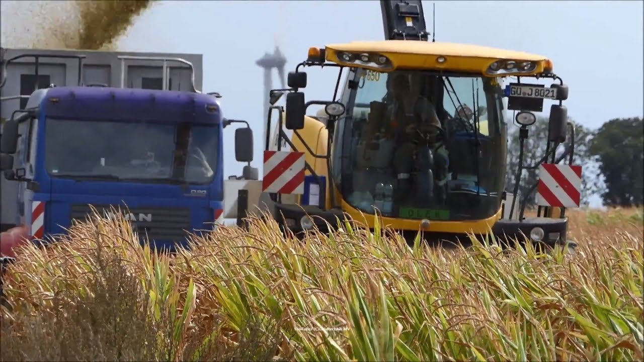New Holland-Fendt-MAN / Maissilage - Corn Silage 2018  2/2
