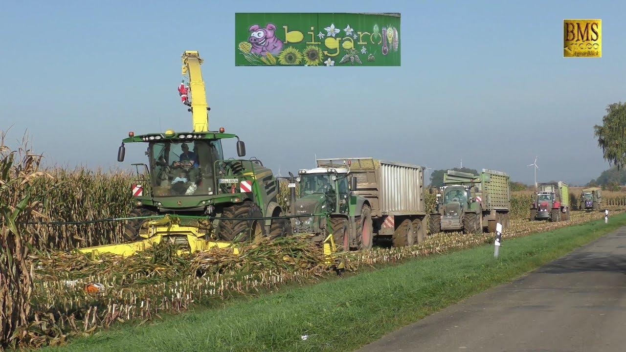 Großeinsatz Maishäckseln / 20 Fahrzeuge Biogasanlage biggest farmer corn harvest Maisernte  LU Blunk
