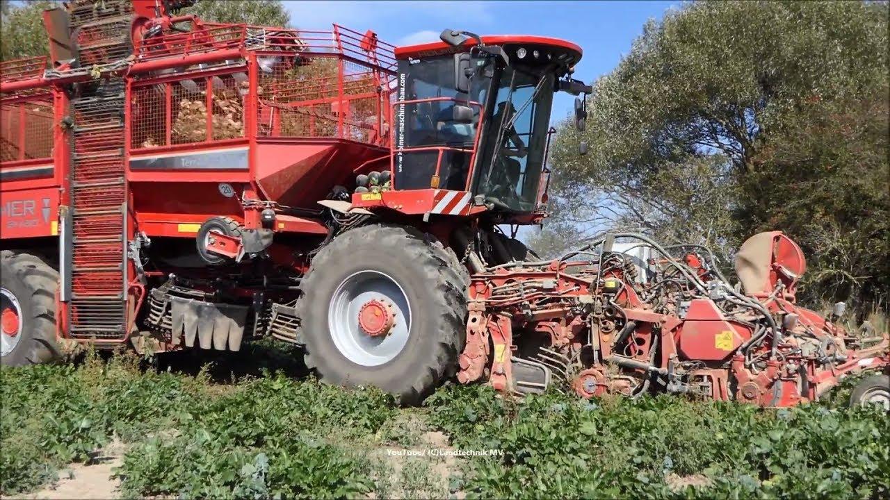 Holmer-Fendt / Rübenernte - Beet Harvest  2018