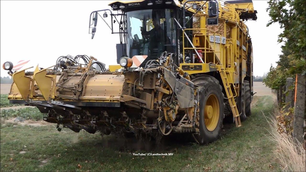 Ropa Tiger 6 / Rübenernte - Beet Harvest   2018