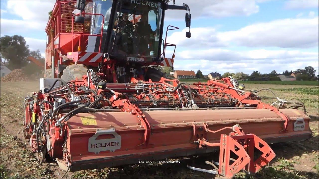 🎃Holmer-Fendt-Hawe💀 /👹 Rübenernte - Beet Harvest   2018   1/3👻