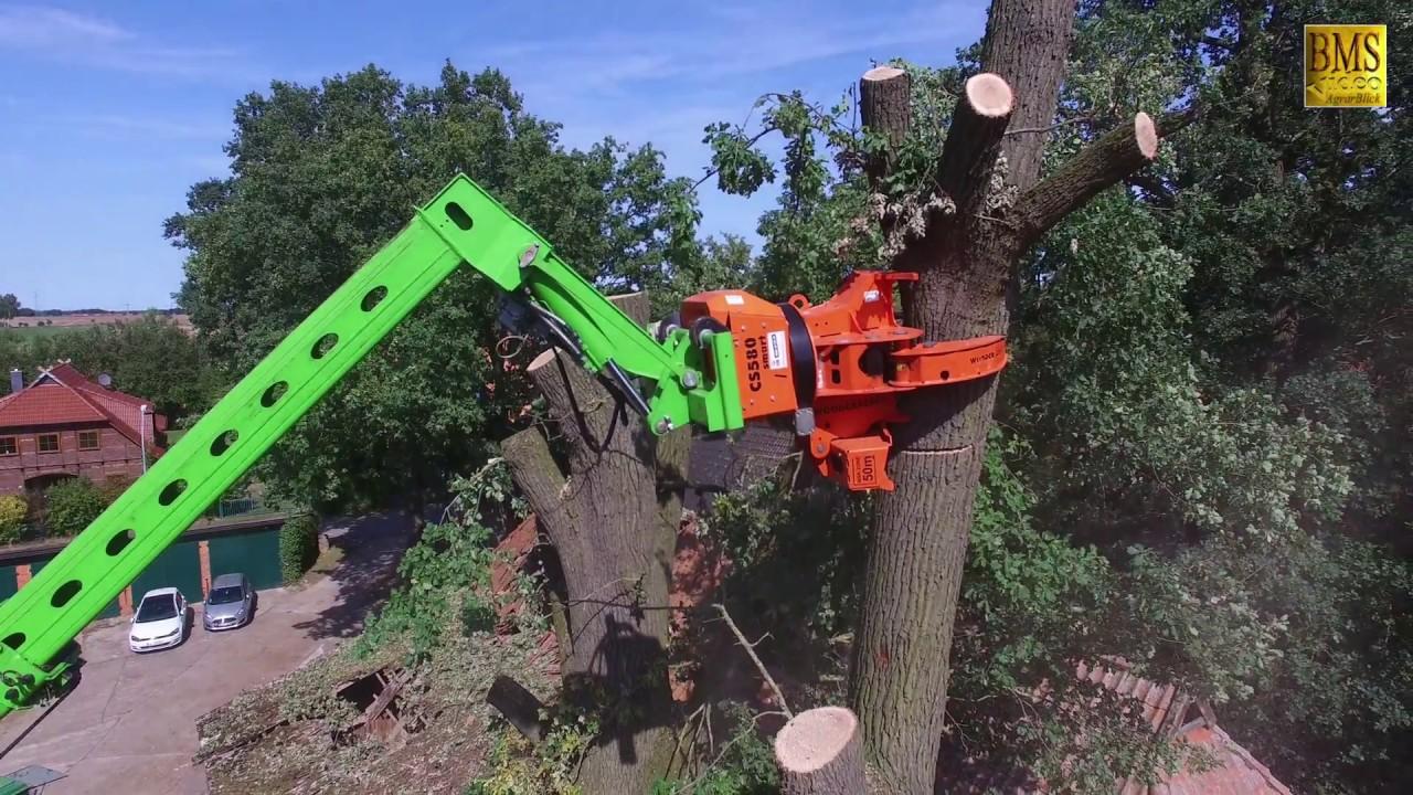 Sturmschaden - Problembaumfällung - Teleskoplader Merlo 4030 -Woodcracker - Holzfäller im Einsatz
