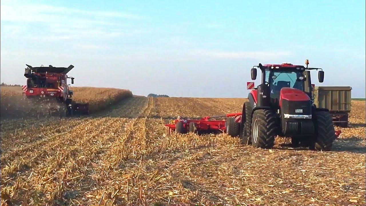 Mais Dreschen • Maisernte • Harvesting Maize • 2018 •Case Axial Flow •Case Puma / Magnum •Steyr  2/2
